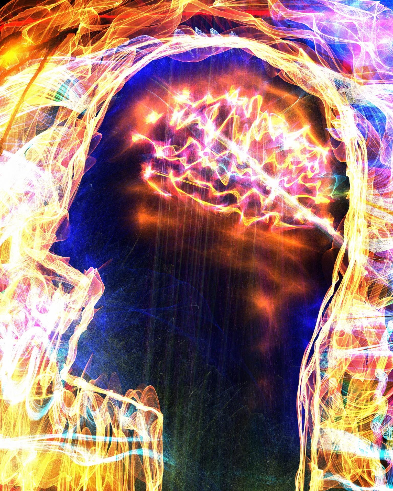 neurmarketing, brain, human brain,