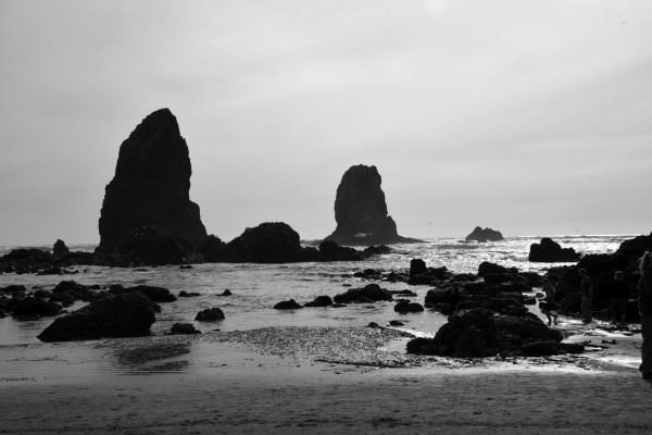 rocky beach landscape free stock