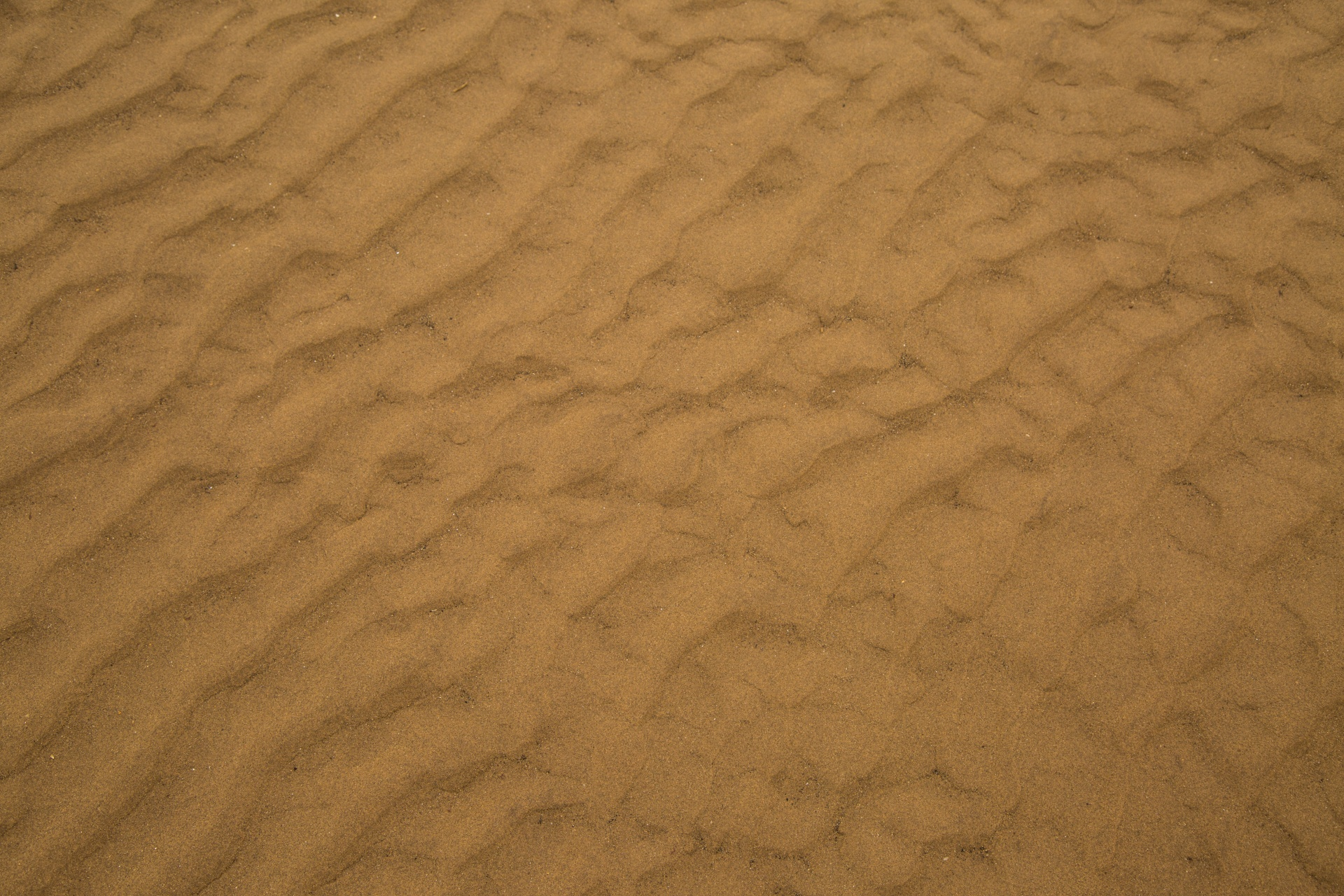 Sand Texture Free Stock Photo  Public Domain Pictures