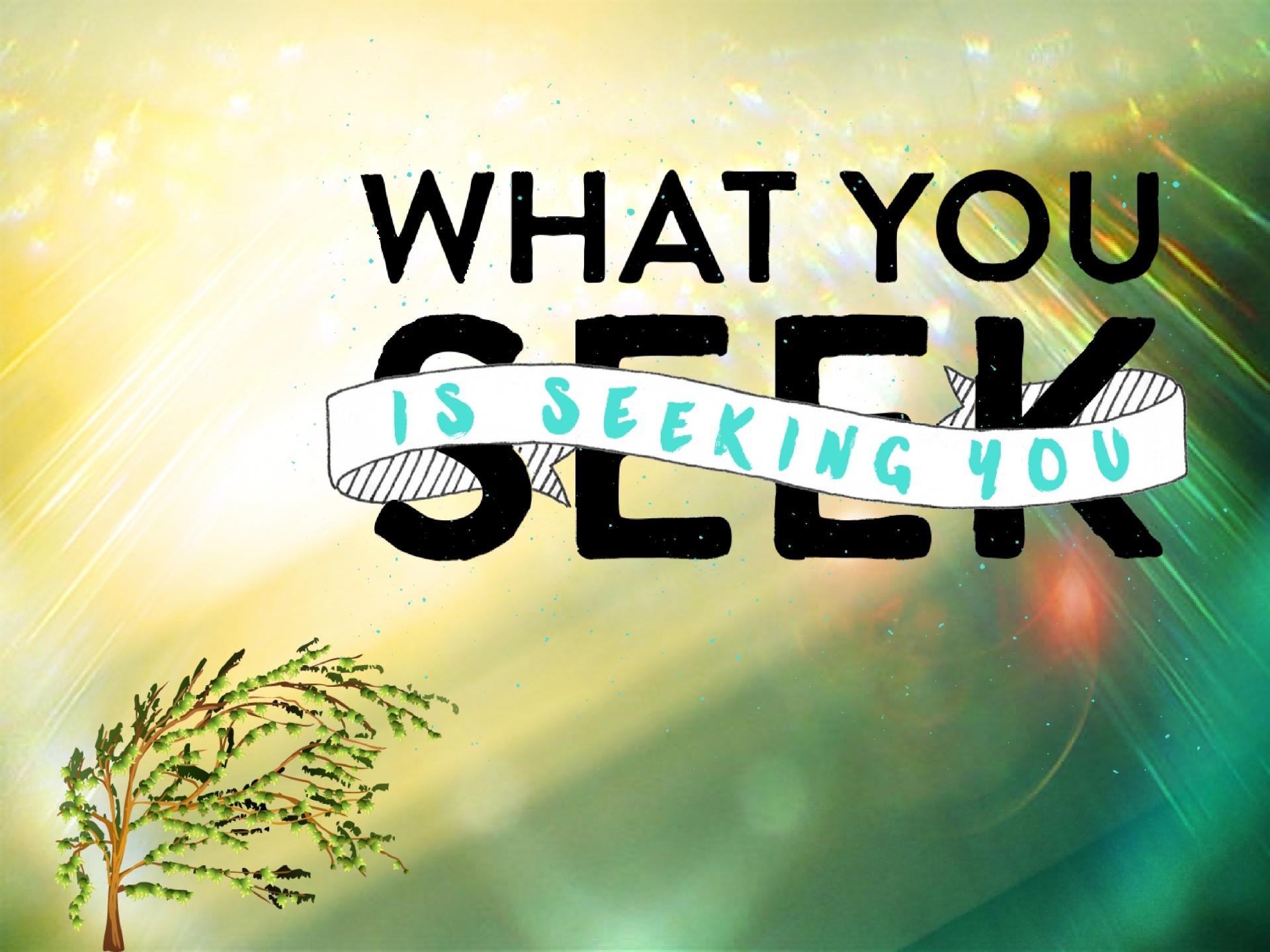 Looking, Seeking, What You Seek