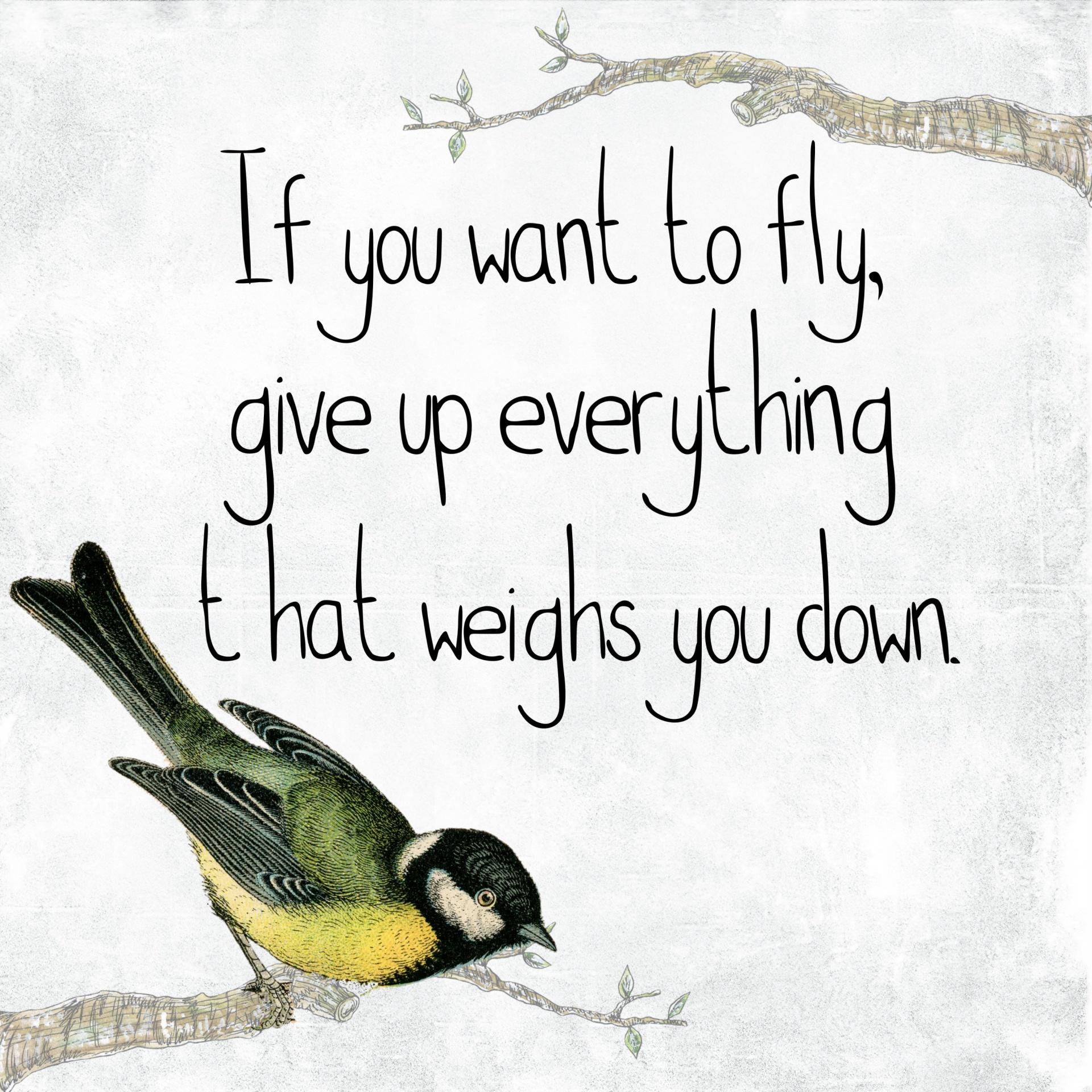 flying, motivation, encouragement