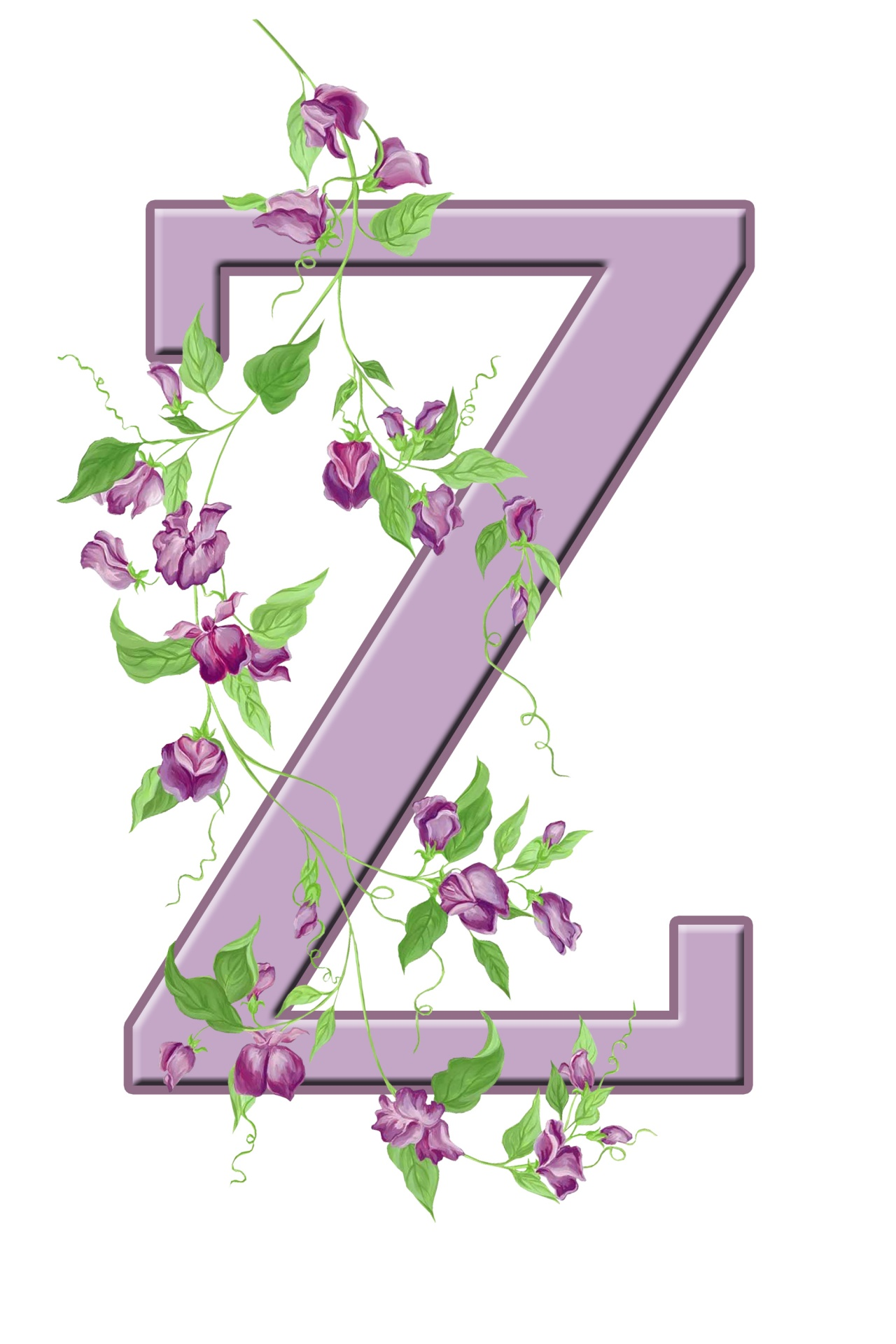 Letter Z Floral Initial Free Stock Photo
