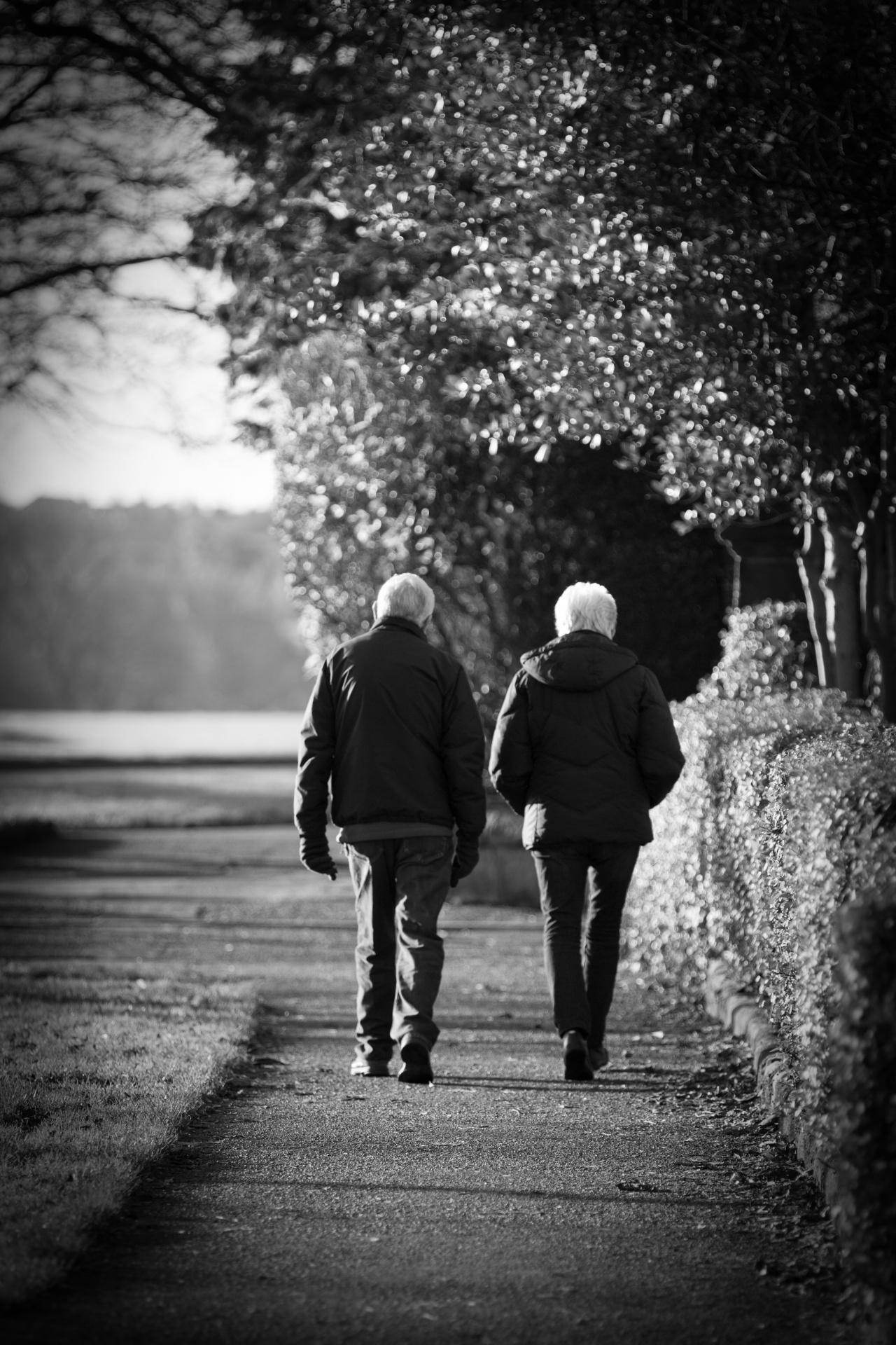 Old Couple On The Walk Free Stock Photo  Public Domain