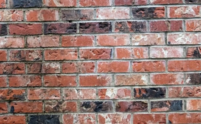 Brick Wall 3 Free Stock Photo Public Domain Pictures