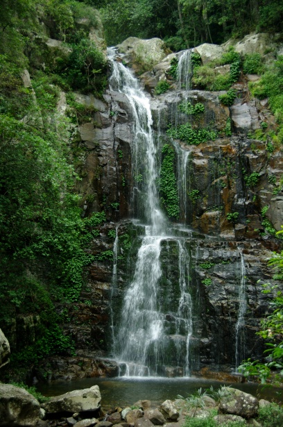 Falls Wallpaper Waterfall Rainforest Waterfall Free Stock Photo Public Domain Pictures