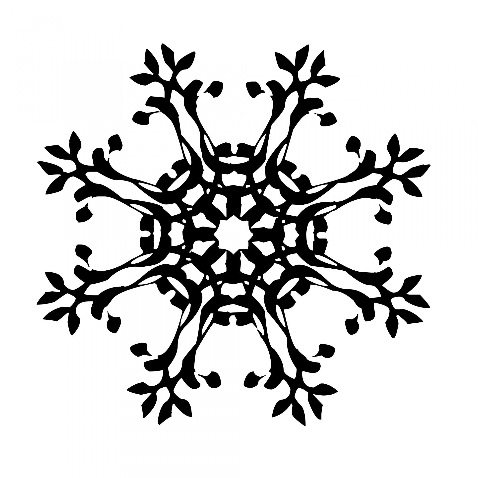 Black Snowflake Free Stock Photo