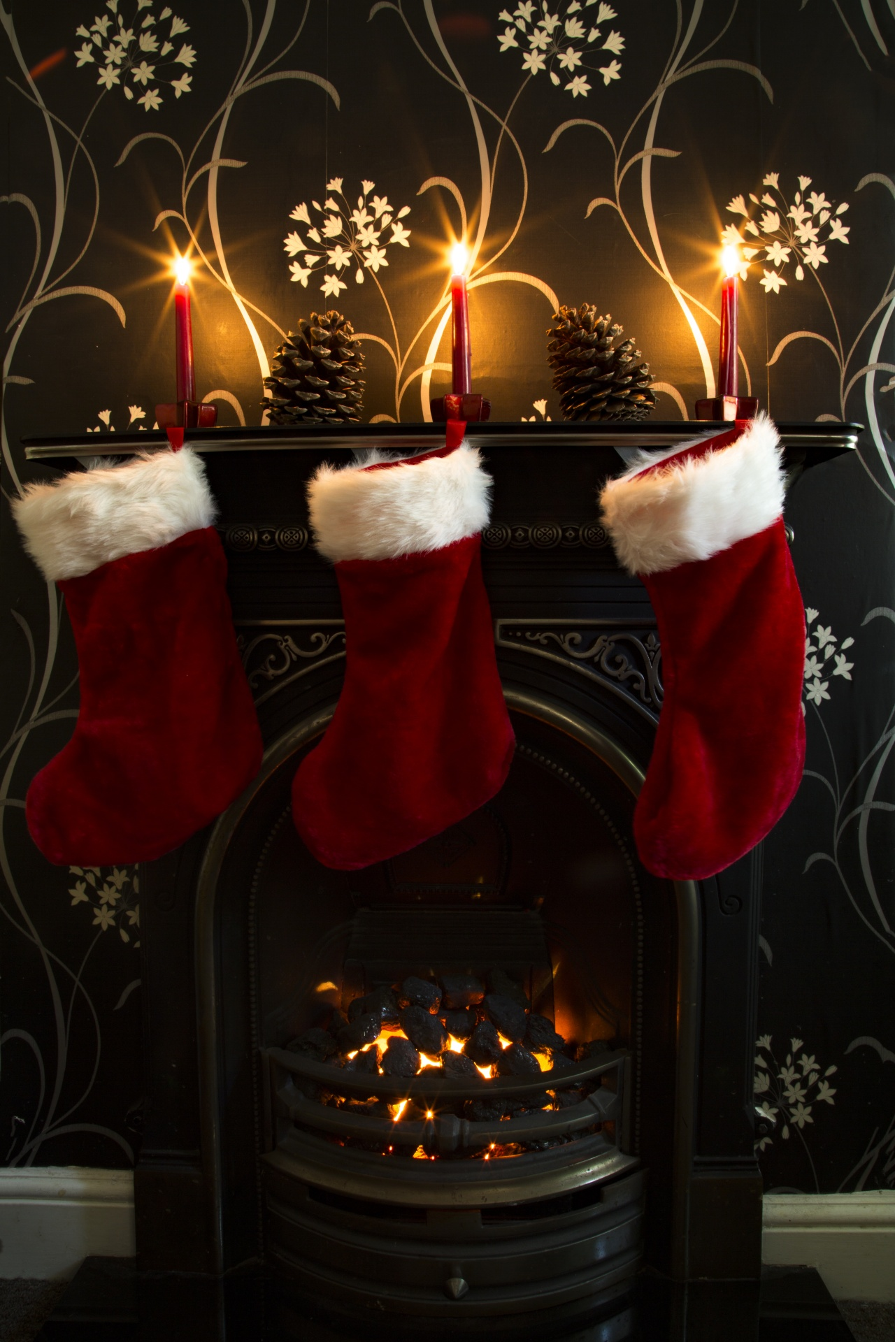 Christmas Free Stock Photo  Public Domain Pictures