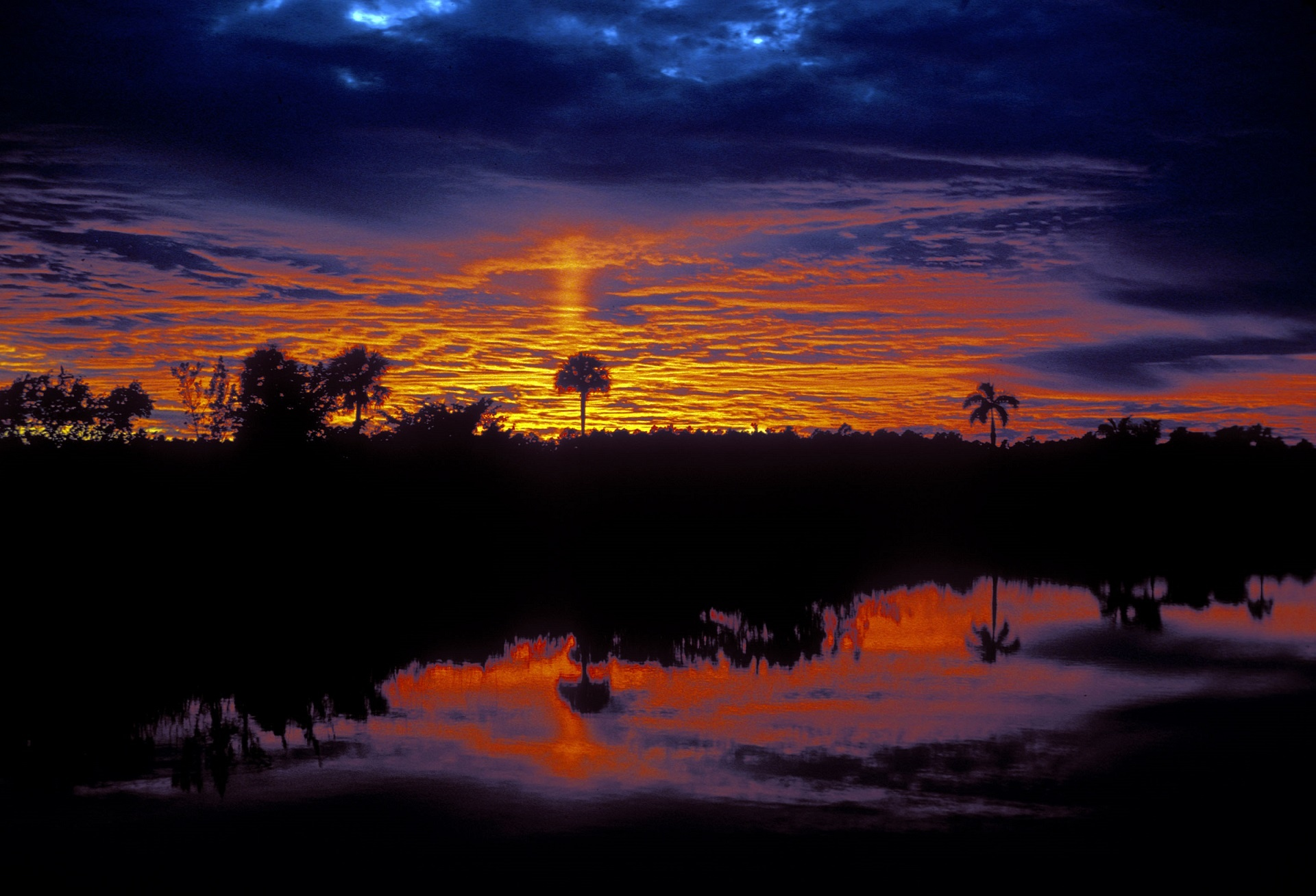 Cell Wallpaper Hd Everglades Sunrise Free Stock Photo Public Domain Pictures