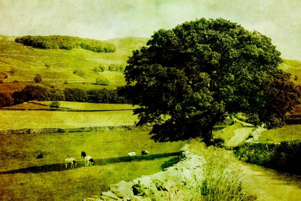 Vintage Landscape Countryside Free Stock - Public Domain