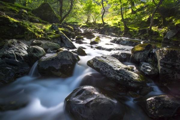 water stream landscape free stock