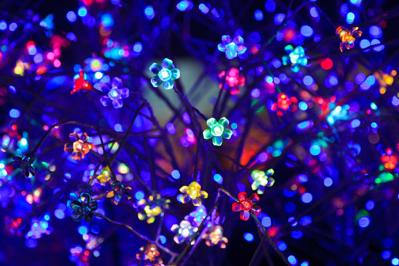 Decorative Led Lights Free Stock Photo  Public Domain