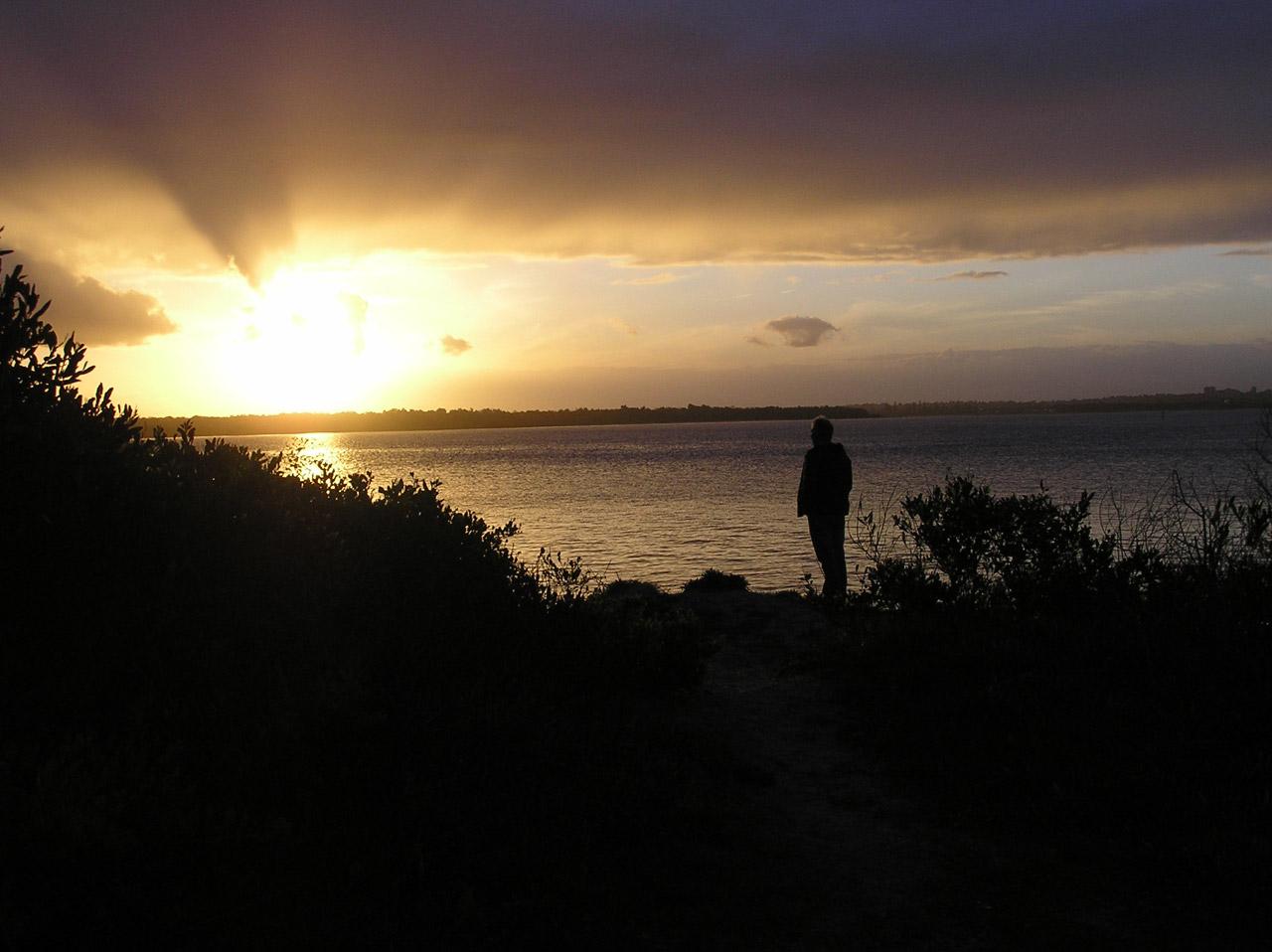 Man On Beach At Sunset Free Stock Photo Public Domain