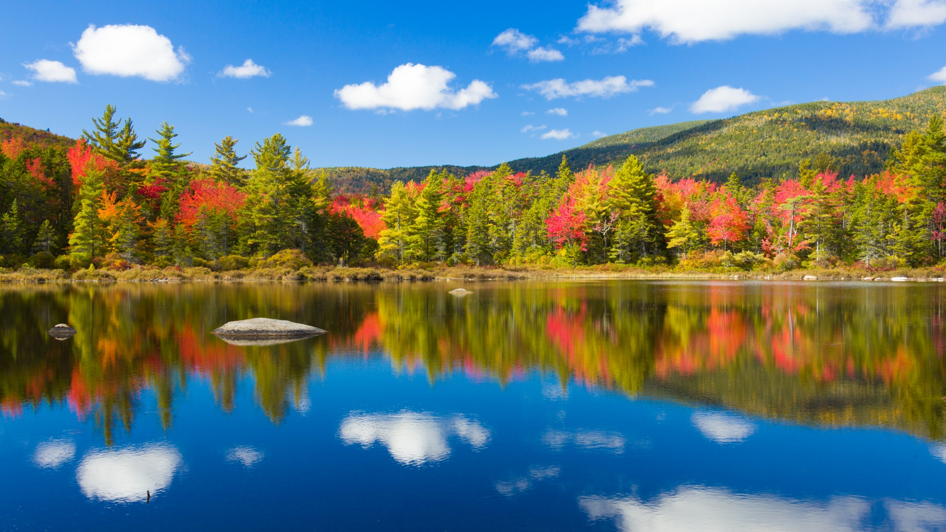 Maine Fall Foliage Wallpaper Fall By The Lake Free Stock Photo Public Domain Pictures