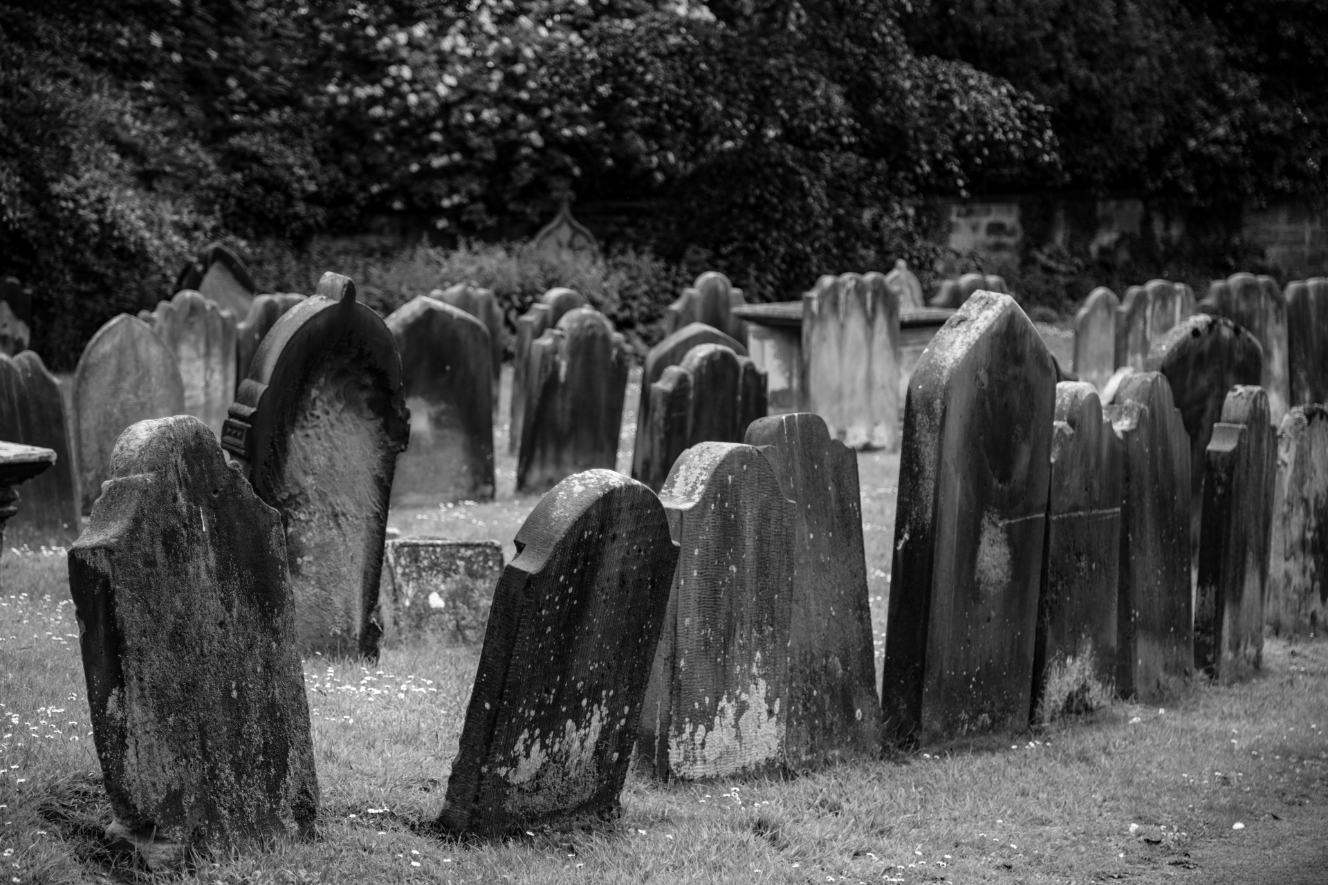 Old Cemetery Free Stock Photo  Public Domain Pictures