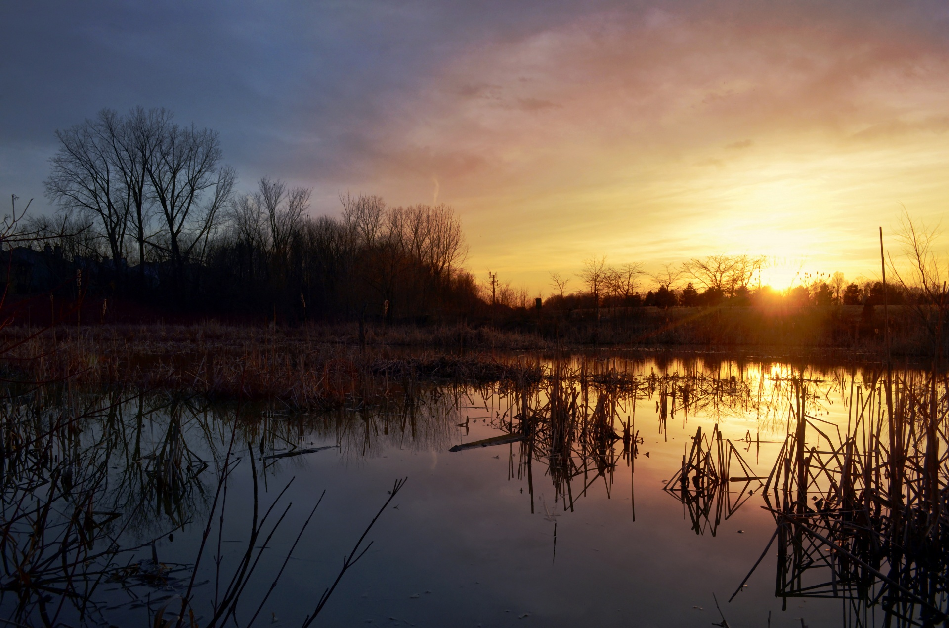 Free Wallpaper Pictures Of Fall Sunset Marsh Free Stock Photo Public Domain Pictures