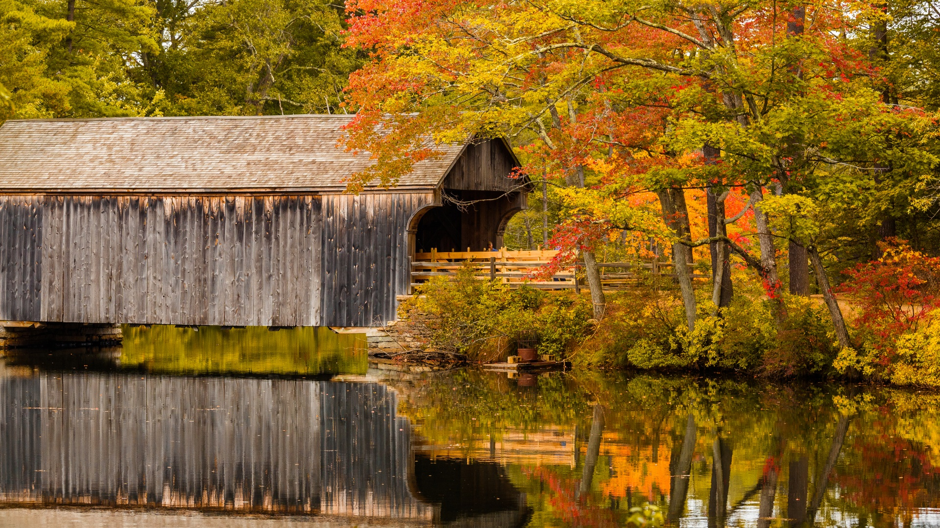 Fall Leaves Wallpaper Free Covered Bridge In Fall Free Stock Photo Public Domain