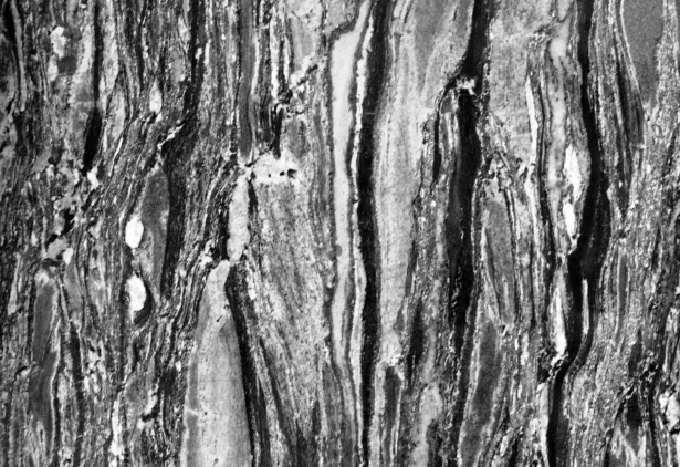 Black And White Marble Texture Free Stock Photo  Public