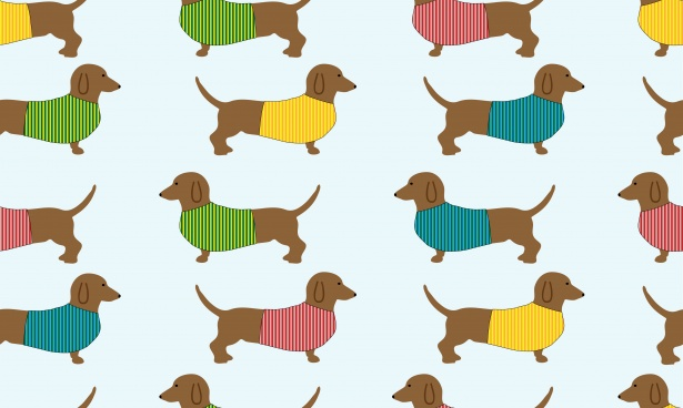 Free Cute Cartoon Wallpapers Dachshund Dog Wallpaper Background Free Stock Photo