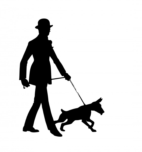 Dog Walking Silhouette Human