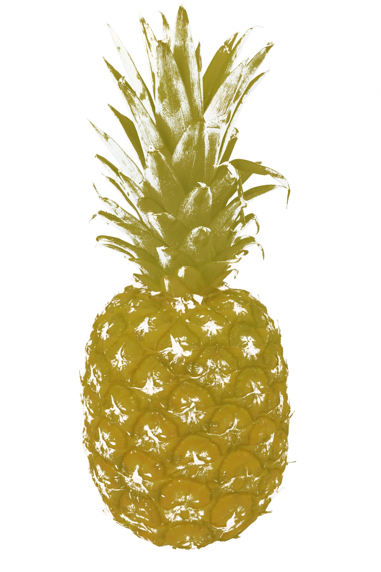 Pineapple Gold Clipart Free Stock Photo  Public Domain Pictures