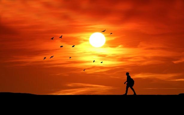 Anime Sunset Wallpaper Sunset Silhouette Man Walking Free Stock Photo Public