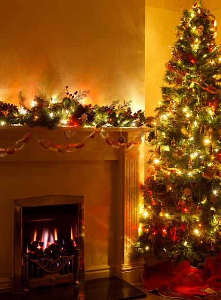 Christmas Tree And Fireplace Free Stock Photo  Public Domain Pictures