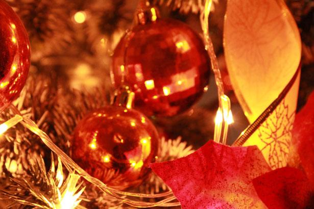 christmas photo background