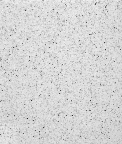 Mosaic Texture 1 Free Stock Photo  Public Domain Pictures