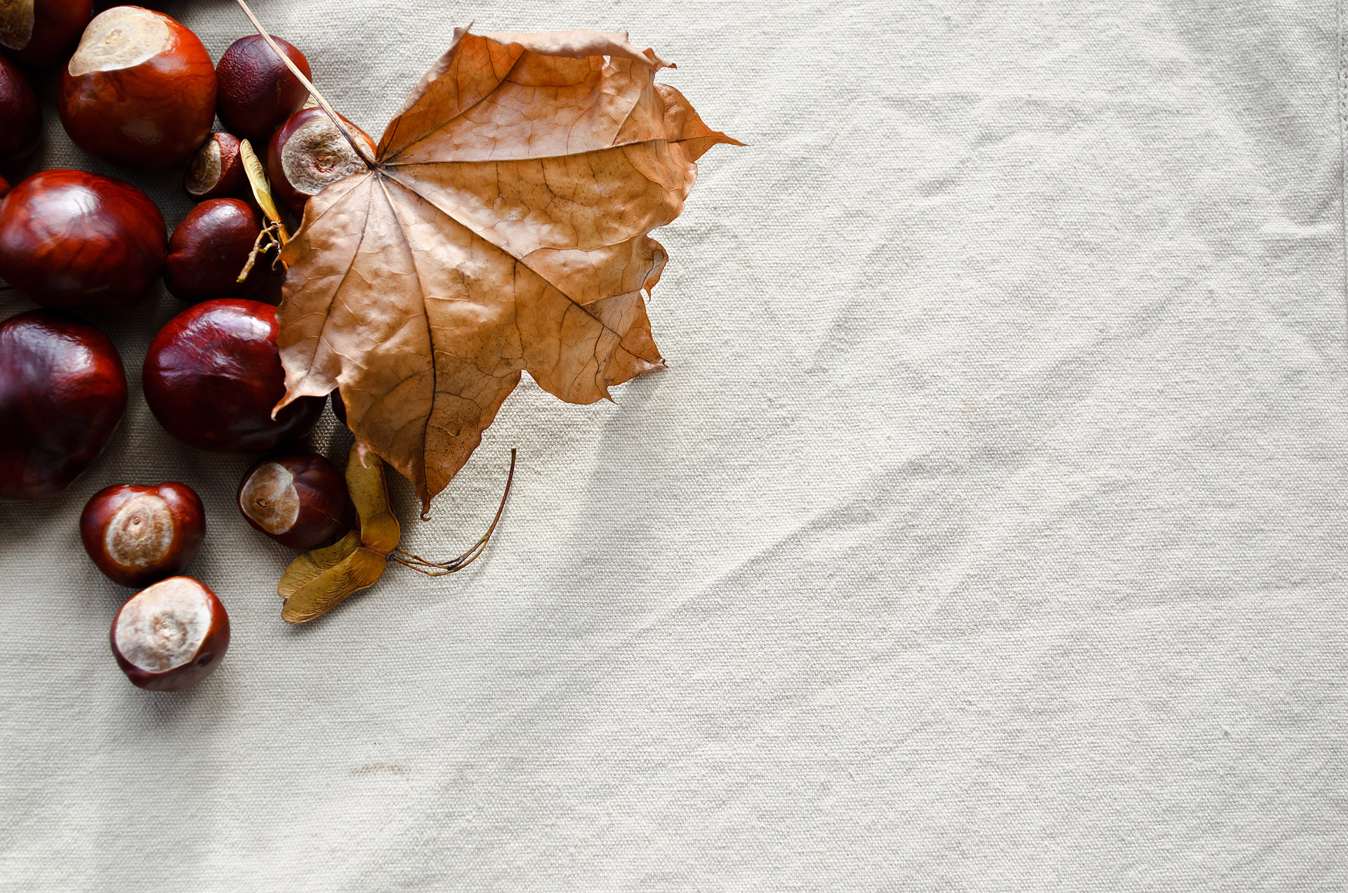 Autumn Background Free Stock Photo  Public Domain Pictures