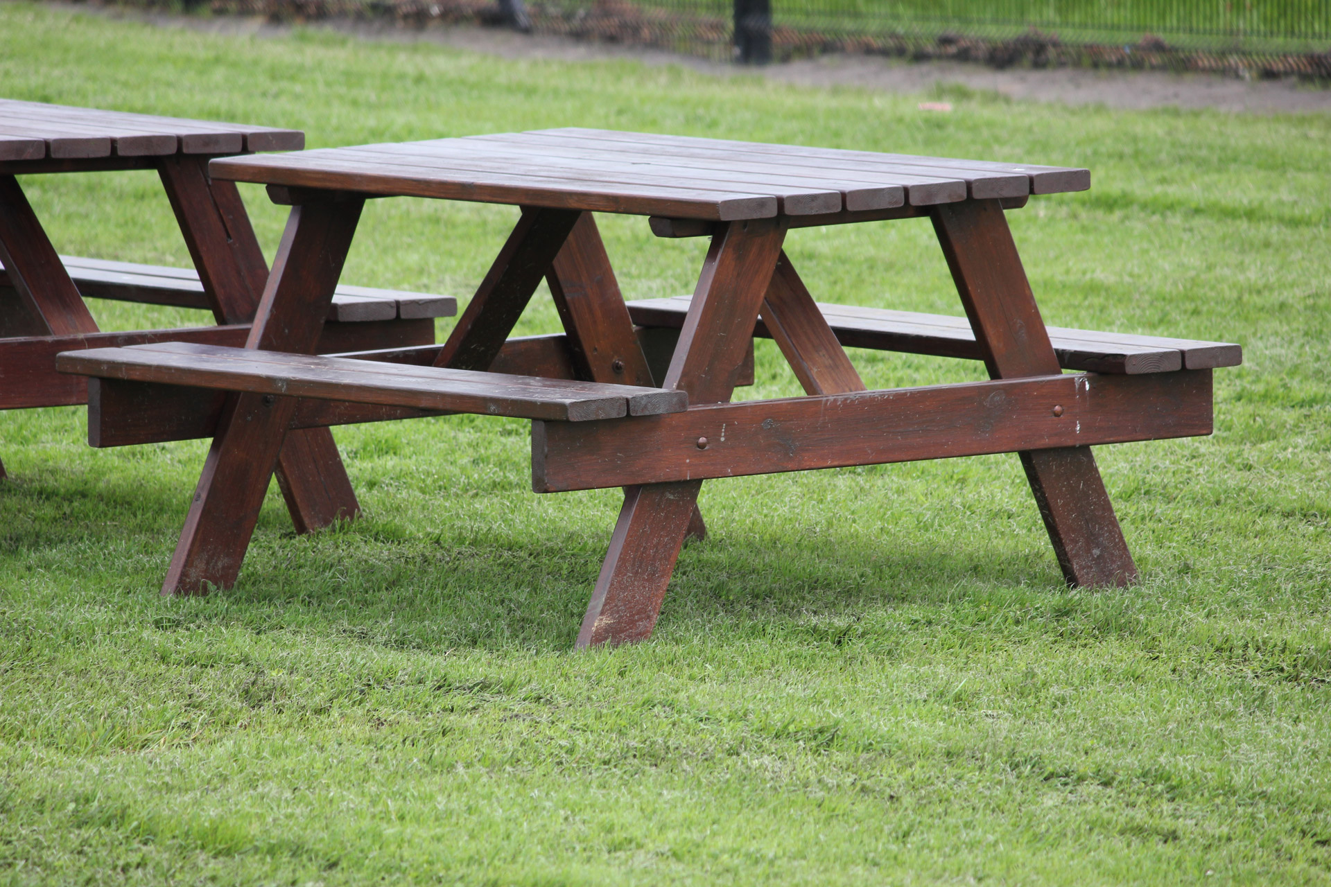 wood for picnic table