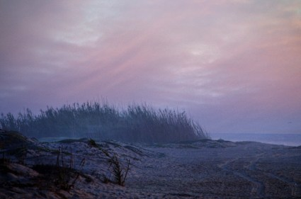 Foggy Beach Free Stock Photo - Public Domain Pictures