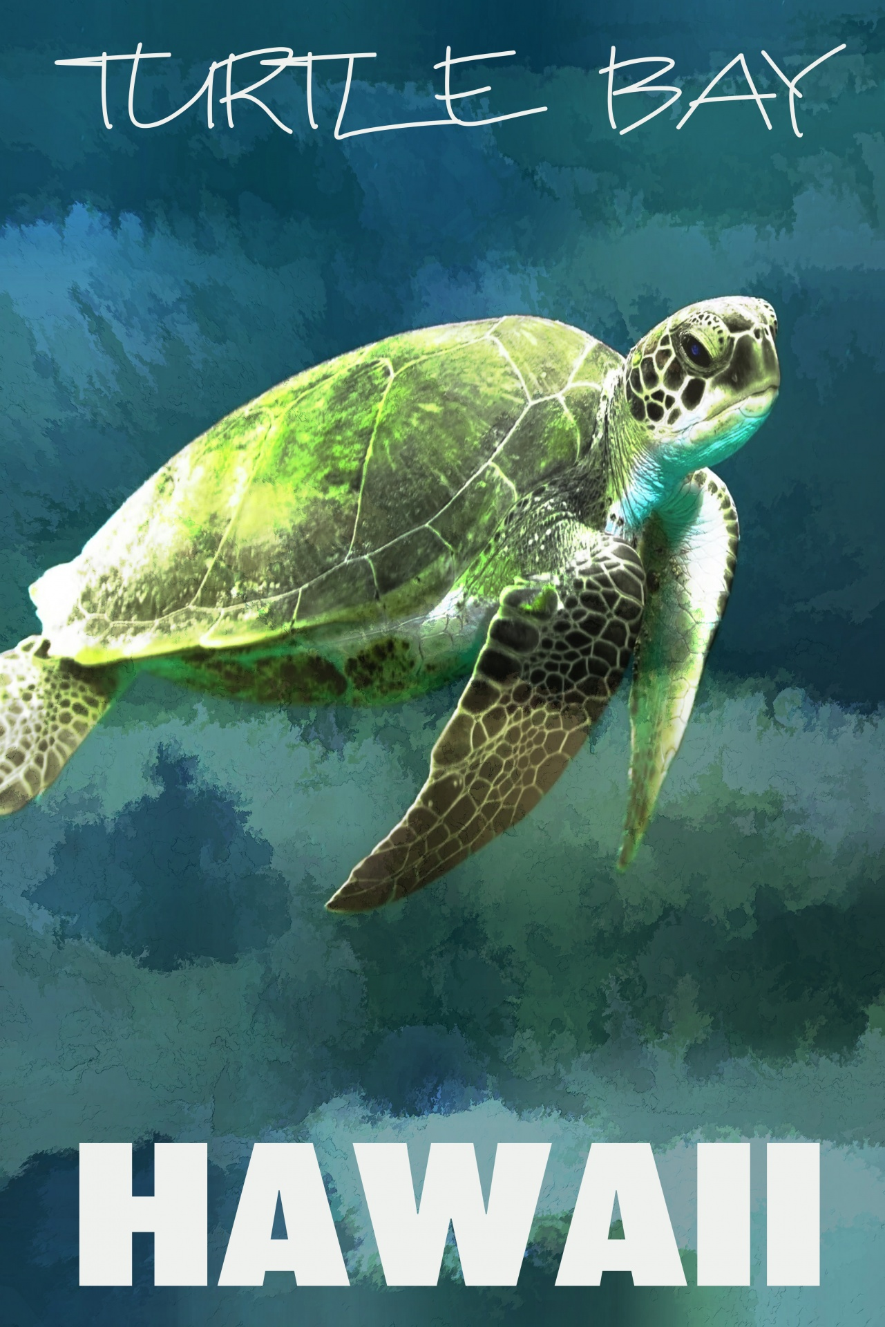 sea turtle artistic poster free stock
