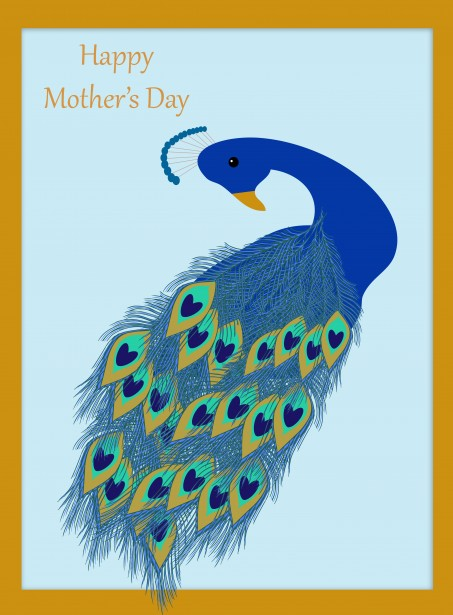 Peacock Mother's Day Card Free Stock Photo Public Domain