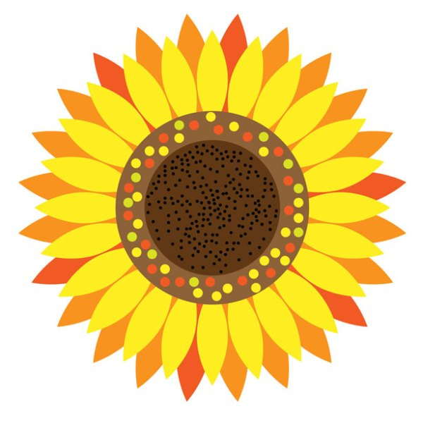 sunflower floral clipart free stock