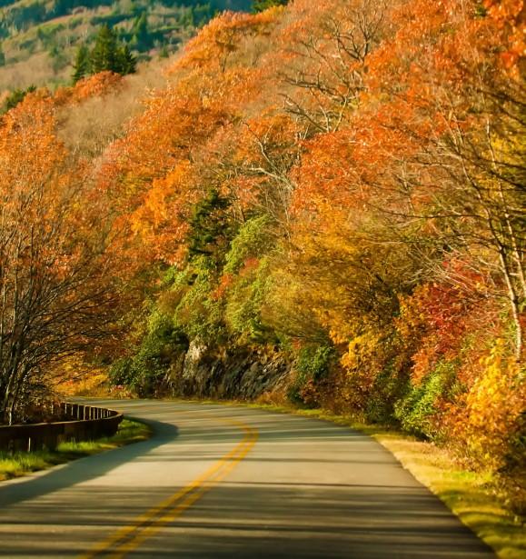 Fall Down Wallpaper Autumn Season Road Free Stock Photo Public Domain Pictures