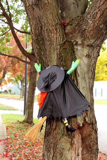 Witch Crash Free Stock Photo  Public Domain Pictures