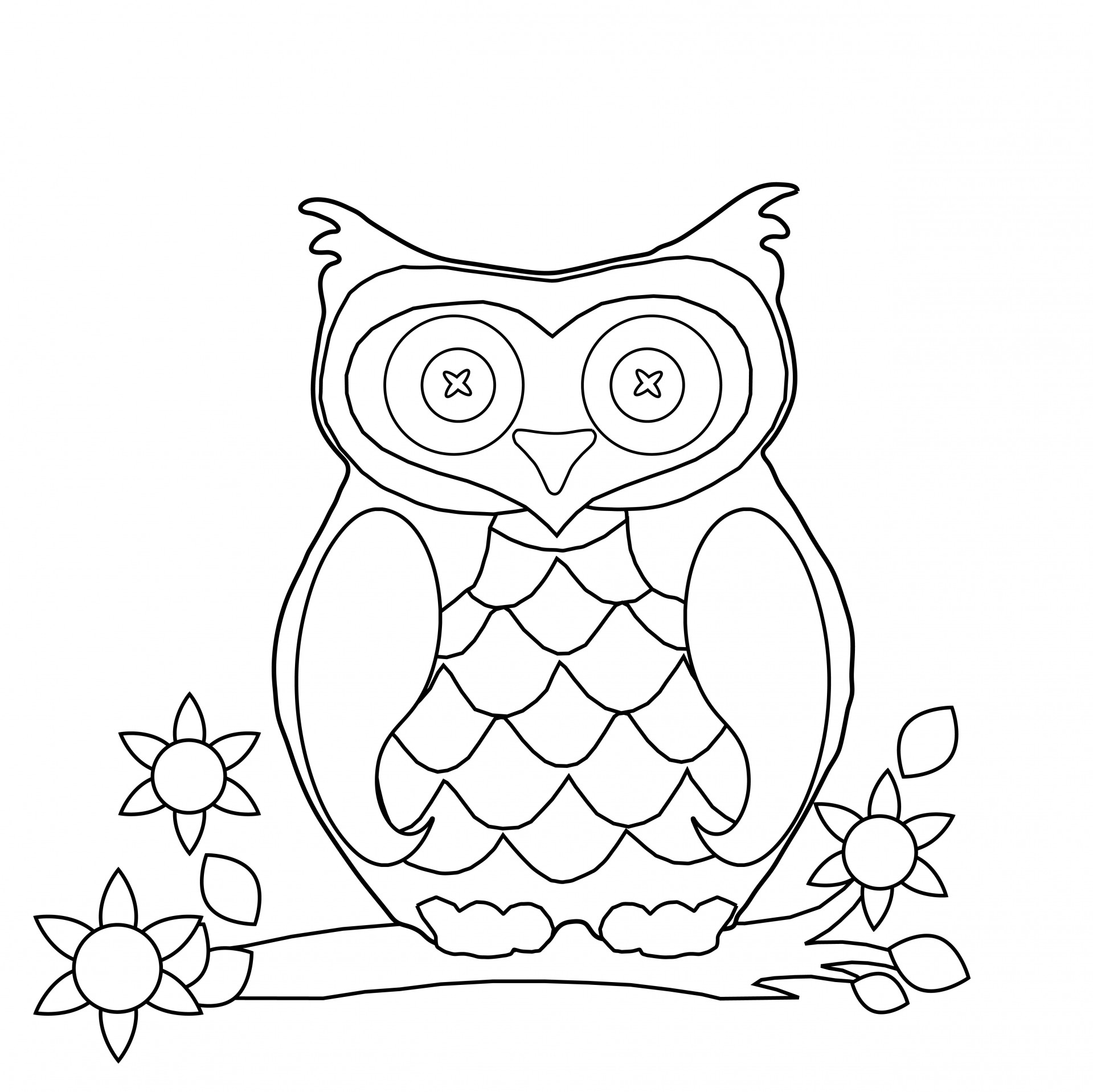 Owl Coloring Page Clipart Free Stock Photo