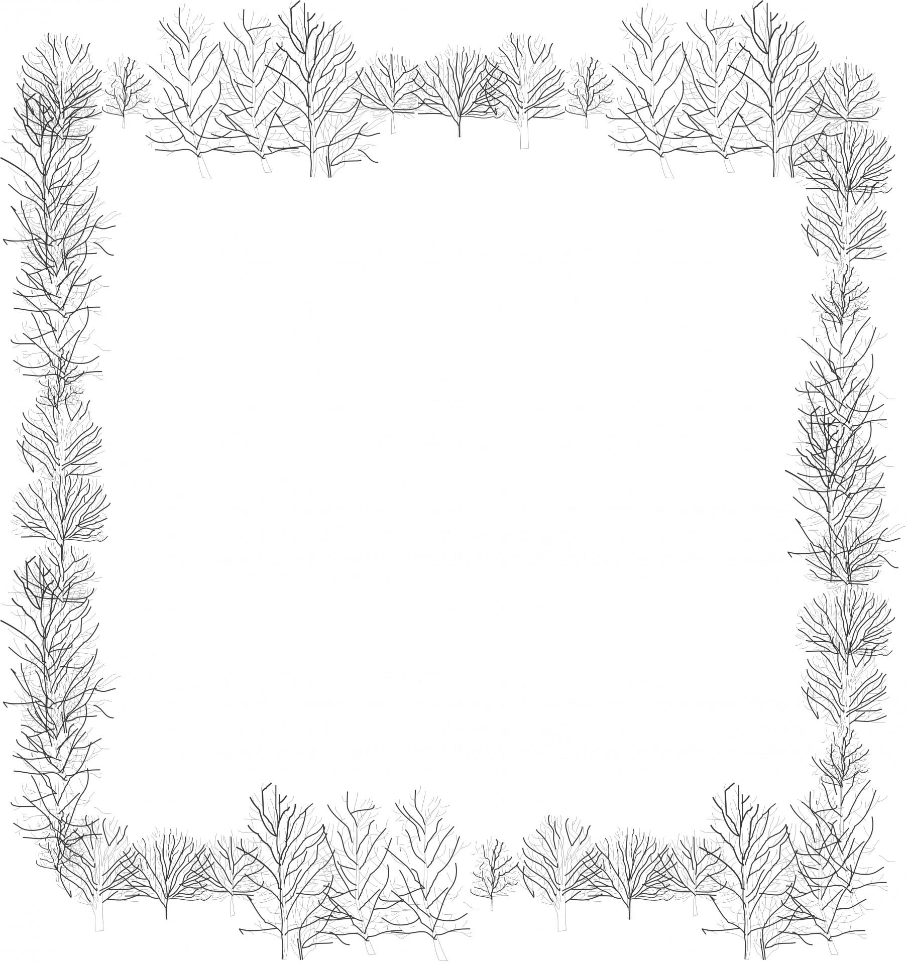 Tree Frame Free Stock Photo