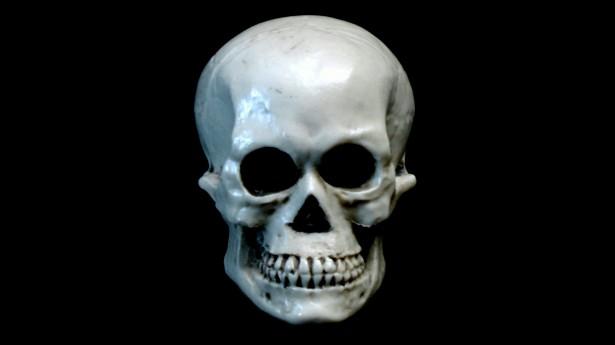 Skull Wallpaper Hd Skull On Black Background Free Stock Photo Public Domain
