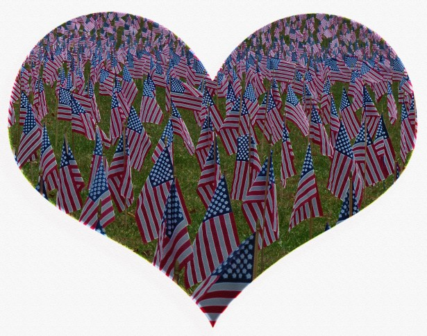 USA Heart Flags