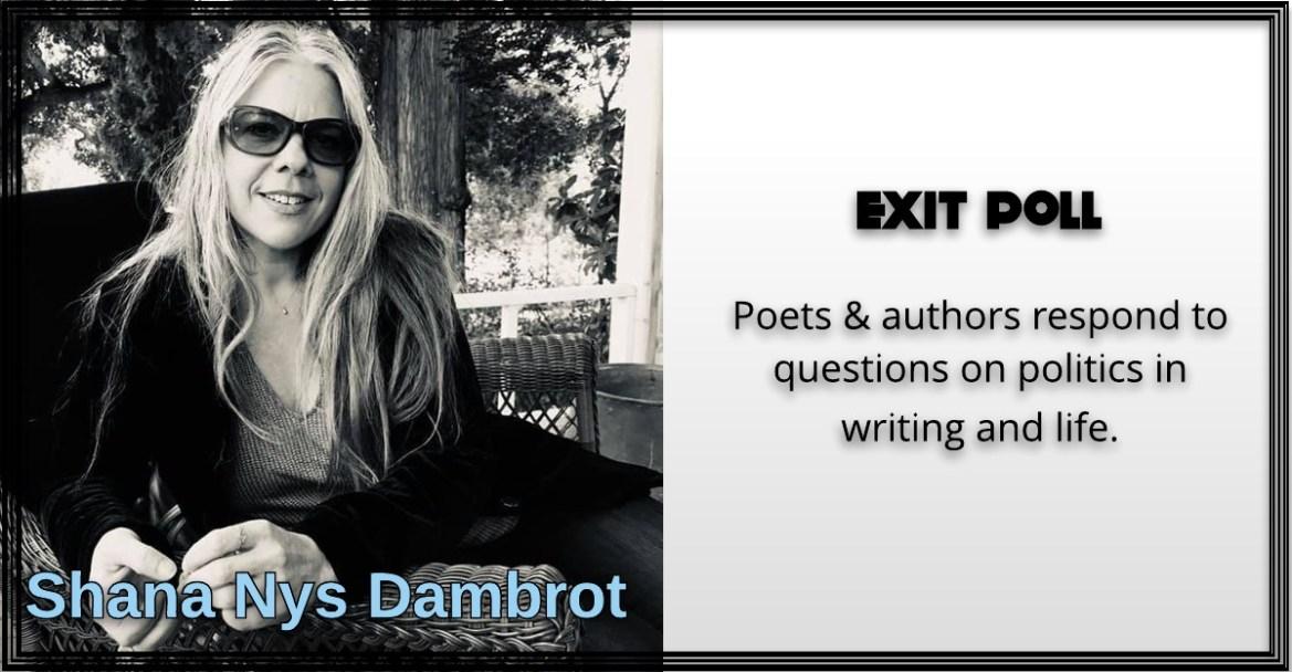 Shana Nys Dambrot, Exit Poll