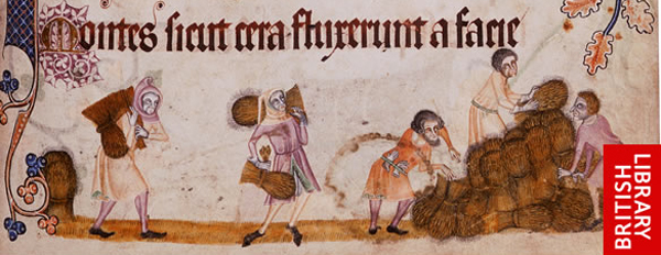 Reaping from the Luttrell Psalter, courtesy of the British Library.