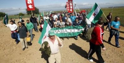 Alrededor de medio millar de jornaleros, convocados por el Sindicato Andaluz de Trabajadores (SAT), han ocupado una finca pública en Palma del Río (Córdoba). / EFE