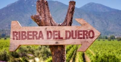 Denominación de origen: Ribera del Duero