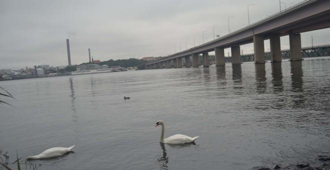 Puente junto al que supuestamente se halló el cadáver del joven vasco.