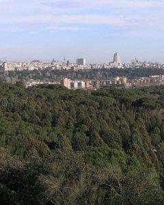 Cerro Garabitas en la actualidad