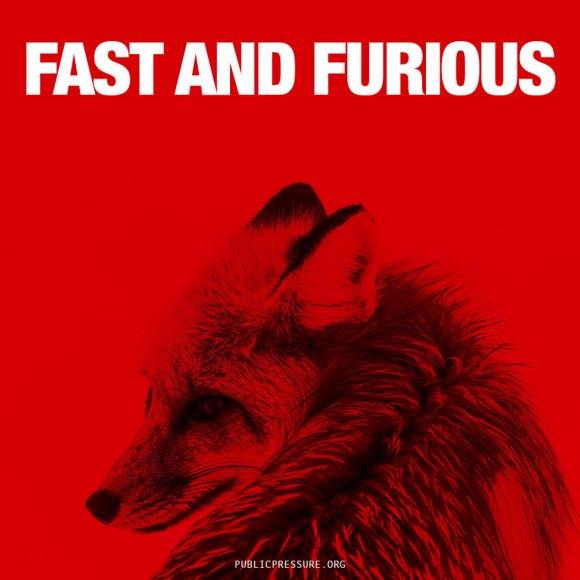 fastandfurious2-900