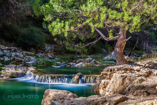 Fotografía de paisaje y naturaleza