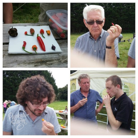 Chilli Challenge 2015 at Puckator Farm Camp Out Weekend