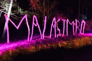 Malasimbo Festival, Call for Help